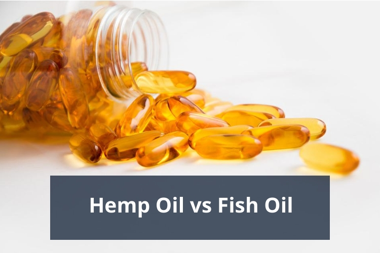 Hemp Oil vs Fish Oil Review